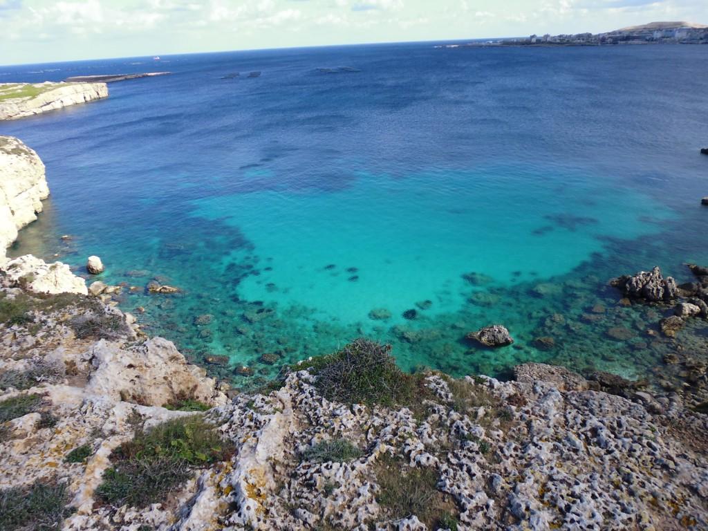 Sharks Bay Malta